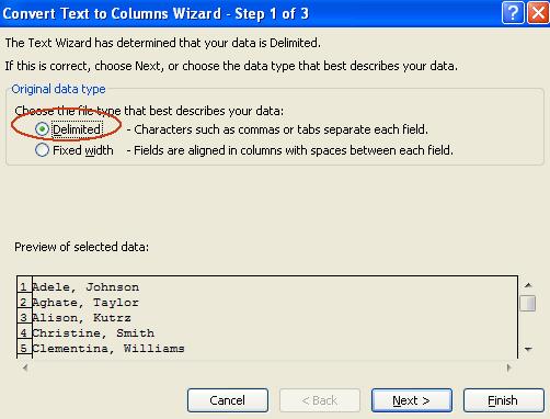 excel convert text two column wizard